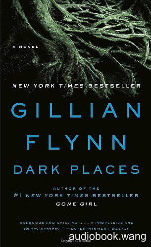 Dark Places - Gillian Flynn Unabridged (mp3/m4b音频) 370.81 MBs