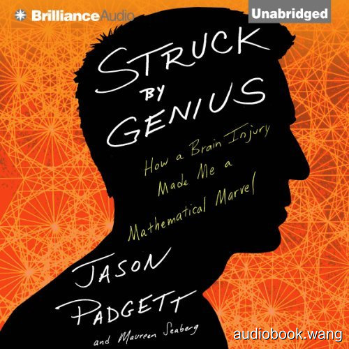 Struck by Genius:How a Brain Injury Made Me a Mathematical Marvel Unabridged (mp3音频+mobi+epub+pdf+txt+docx) 7hrs